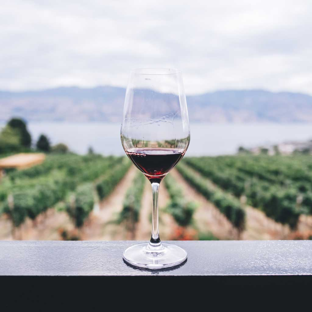 single red wine glass with background of blurred green crops